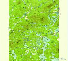 New York NY Saint Regis 129312 1955 62500 by wetdryvac