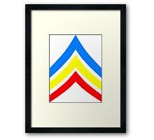 United States Gay Sergeant Stripes Framed Print
