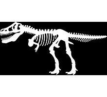 Tyrannosaurus Rex Dinosaur Skeleton Photographic Print