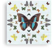 Butterfly kaleidoscope on Graph Paper Canvas Print