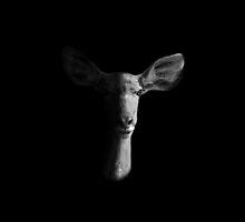 Dark Female Kudu Portrait by Cathy Withers-Clarke