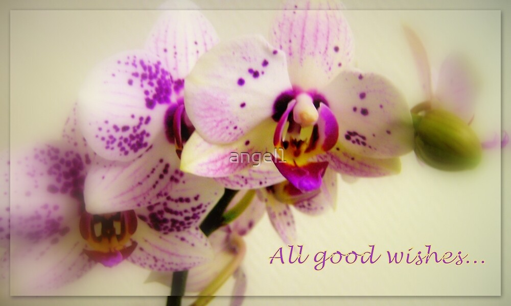 All good wishes... by ©The Creative  Minds