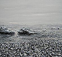 the beach : still life II (detail2) by Martin Rolt