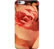 Pink Rose in Bloom iPhone Case/Skin
