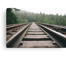 Railroad Forest Canvas Print