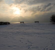 Winter Scene by SussexScenictys