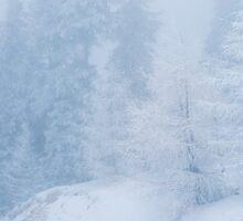 frozen fog Sticker