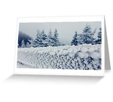 fence frost Greeting Card