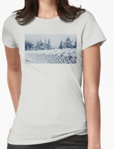 fence frost Womens Fitted T-Shirt