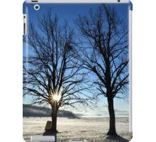 Early morning frost - Plastiras lake iPad Case/Skin
