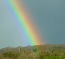 POT OF GOLD? by Marilyn Grimble