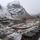 Looking down the glen by alanf1