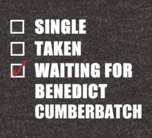 Waiting For Benedict Cumberbatch by kardish