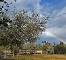 RAINBOW OVER IRONWOOD PARK PALM DESERT, CA by JAYMILO