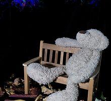 Fireworks bear by Sara Sadler