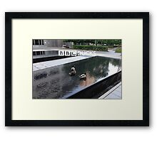BBC Ducks Framed Print