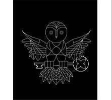 Free Hand Symmetrical Owl  Photographic Print