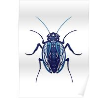 Ribbon Beetle Poster