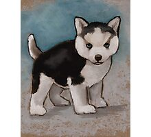Cute Husky Puppy, Blue Eyes, Oil Pastel Painting Photographic Print