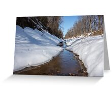 Stream on a winter day Greeting Card