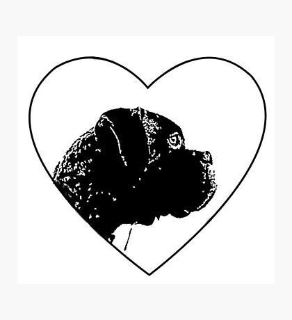 Love Boxer Dog Photographic Print