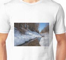 Winter Stream Unisex T-Shirt