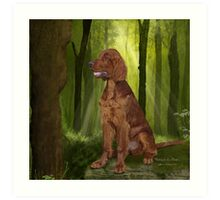 Irish Setter 'Waiting for his Master' Art Print