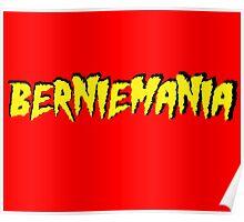 Berniemania! Poster