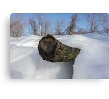 Log In The Snow Canvas Print