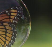 Bubble Fly Sticker