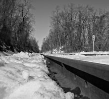Train Tracks On a Snowy Day by CSSphotos