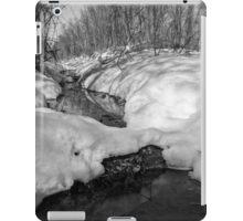 Snowy Pond iPad Case/Skin