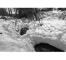 Snowy Pond on a Winter Day Photographic Print