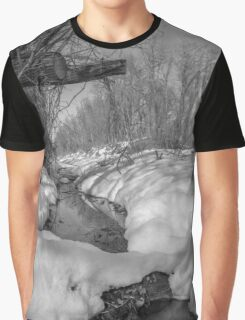 Black and White Snowy Pond Graphic T-Shirt