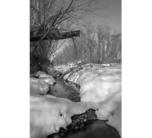 Black and White Snowy Pond Photographic Print