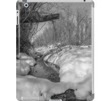 Black and White Snowy Pond iPad Case/Skin