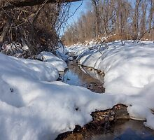 HDR Snowy pond by CSSphotos