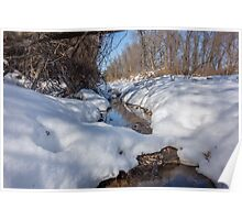 HDR Snowy pond Poster