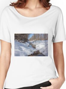 HDR Snowy pond Women's Relaxed Fit T-Shirt