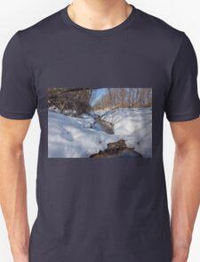 HDR Snowy pond Unisex T-Shirt
