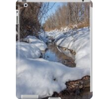 HDR Snowy pond iPad Case/Skin