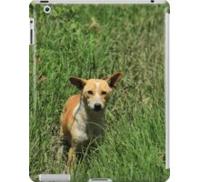 Dog in Tall Grass iPad Case/Skin