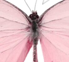Pink Butterfly Sticker