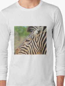 Zebra - African Wildlife - Tranquility Pose Long Sleeve T-Shirt