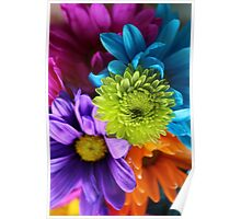 Multi-Colored Flowers Poster