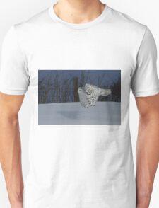 Low altitude Unisex T-Shirt