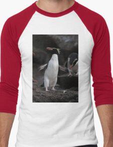 Yellow-Eyed Snare Penguin Men's Baseball ¾ T-Shirt
