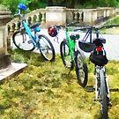 Line of Bicycles in Park by Susan Savad