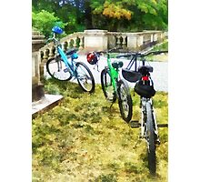 Line of Bicycles in Park Photographic Print