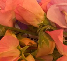 Fragrant Blossoms Sticker